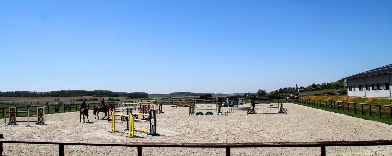 Grégory Wathelet arena